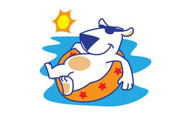 Polar Bear Sunbathing Stock Images