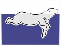Polar bear swimming Royalty Free Stock Images