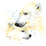 Polar bear T-shirt graphics, polar bear illustration with splash watercolor textured background. Royalty Free Stock Images