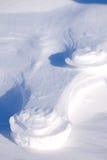Polar Bear Track stock photos