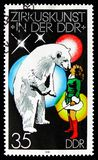 Polar Bear (Ursus maritimus) kissing a Girl, Circus serie, circa 1978. MOSCOW, RUSSIA - SEPTEMBER 15, 2018: A stamp printed in DDR (Germany) shows Polar Bear ( stock image