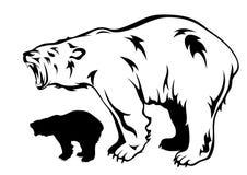 Polar bear vector. Roaring polar bear black and white illustration Stock Photos
