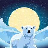Polar bear. Vector illustration of polar bear against ice desert Stock Photography