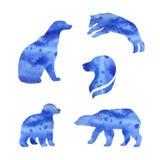 Polar Bear Vector Watercolor Silhouettes Stock Image