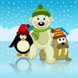 Polar bear walrus penguin friends Royalty Free Stock Photography