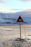Polar bear warning sign Svalbard Royalty Free Stock Photos