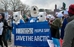 Polar Bears Against Climate Change royalty free stock images