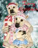 Polar Bears at Christmas. Family of polar bears at Christmas with snow background Stock Images