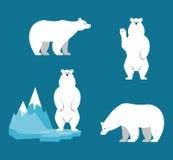 Polar Bears collection. Funny cartoon character. Set of polar animals. Flat style character. Vector illustration stock illustration