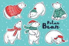 Polar Bears collection in red and green sweater, scarf, hat Royalty Free Stock Photos