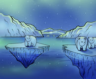 Polar Bears and Northern Lights Stock Photo