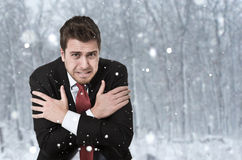 Polar businessman Stock Images