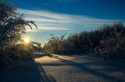 Polar dawn. Solar dawn in the far north in March Royalty Free Stock Images