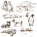Polar explorer Stock Images