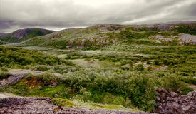 Polar hills Scandinavian tundra in summer Royalty Free Stock Image