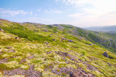 Polar hills Scandinavian tundra in summer Stock Photo