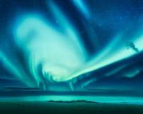 Polar lights above the sea. Green northern lights Stock Photos