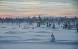 polar natt Arkivbild