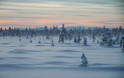 Polar night Stock Photography