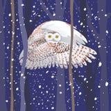 The polar owl flies through the night wood. Polar owl flies through the night wood stock illustration