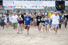 Polar Plunge 2012 Royalty Free Stock Photo