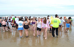 Polar Plunge Event Royalty Free Stock Photos