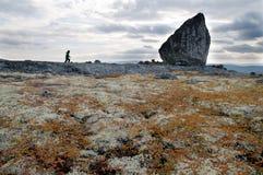 Polar region Arkivbilder