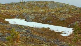 Polar region in spring Stock Image