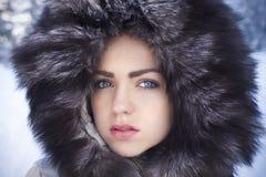 polar skönhet Arkivfoton