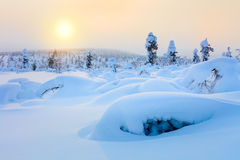 Polar Sunny Winter Landscape -  sparkling snow and big snowbanks Royalty Free Stock Photography