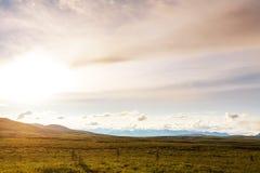Polar tundra arkivbilder