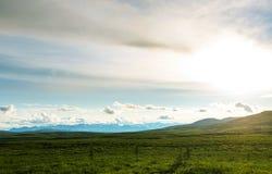 Polar tundra royaltyfri fotografi