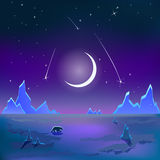 Polar tundra landscape moon night sky vector Stock Photography