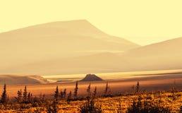 Polar tundra Stock Images