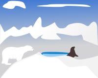 Polarbear hunting seal Royalty Free Stock Images