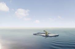 Polare riguardi la banchisa galleggiante di ghiaccio fotografia stock