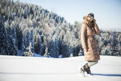 Polare Schönheit Stockfotografie
