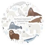 Polare Tiere Vektorkreis-Tiersatz Stockbilder