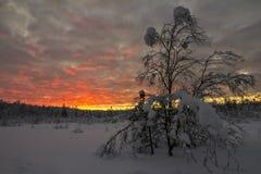 Polarer Sonnenuntergang Stockfotos