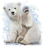 Polares Bear vektor abbildung