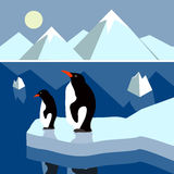Polares Landschaftspanorama Lizenzfreie Stockbilder