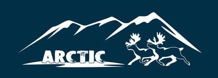 Polares Rotwild ist ein Symbol der Arktis Lizenzfreie Stockfotografie