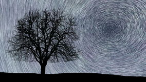 Polaris North Star at center as earth rotates on axis. Beautiful star trails time-lapse stunning cosmos.