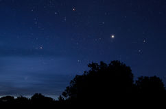 The Polaris star. And night sky with trees skyline stock photography