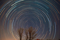 Polaris and star trails over the trees Royalty Free Stock Photography