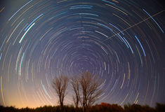Polaris and star trails over the trees Stock Photos