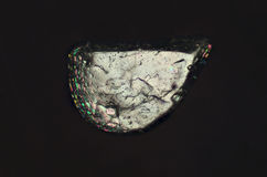 Polarization micrograph of a single grain of sand from Florida. Royalty Free Stock Photography