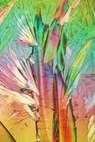 Polarized Light makes Crystals gleam Stock Photo