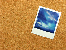 Polaroid on corkboard Stock Images