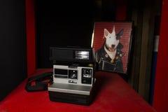 Polaroid en la tabla roja fotos de archivo libres de regalías